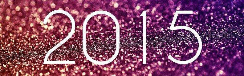 2015 social impact review