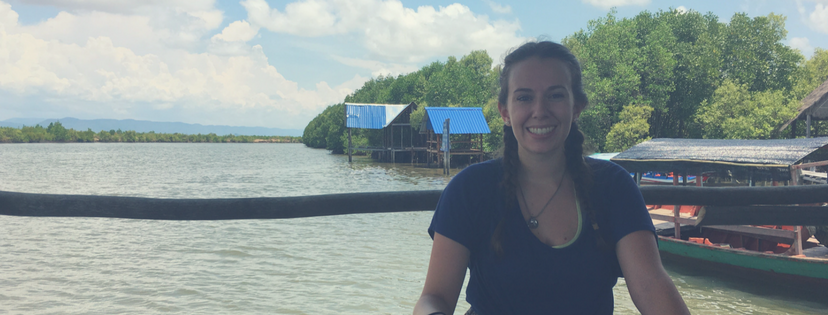 Guest blog: What I brought back from Southeast Asia